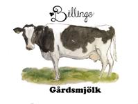 logo_billingegard.se_web